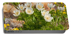 Portable Battery Charger featuring the photograph Western Pasqueflower And Buttercups Blooming In A Meadow by Jeff Goulden