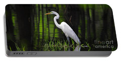 Wetland Wader Portable Battery Charger
