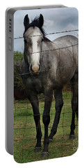 Portable Battery Charger featuring the photograph What Are You Afraid Of by Peter Piatt