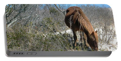 Portable Battery Charger featuring the photograph What Do I See Here? by Photographic Arts And Design Studio