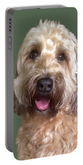 Portable Battery Charger featuring the photograph Wheaton Terrier by Karen Zuk Rosenblatt