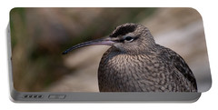 Portable Battery Charger featuring the photograph Whimbrel by Bianca Nadeau