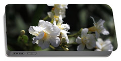 White Flower - Early Spring Time Portable Battery Charger by Ramabhadran Thirupattur