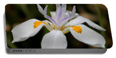 White Flower Portable Battery Charger by Pamela Walton