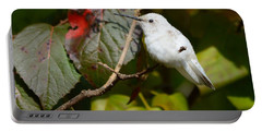 White Hummingbird Portable Battery Charger