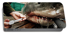 White Shark Blood Sample Extraction Portable Battery Charger