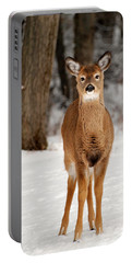 Whitetail In Snow Portable Battery Charger