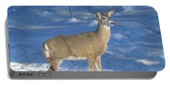Portable Battery Charger featuring the photograph White Tail Deer by Brenda Brown