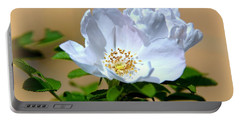 White Tea Rose Portable Battery Charger