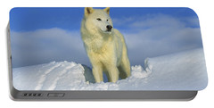 White Wolf In The Snow Idaho Portable Battery Charger