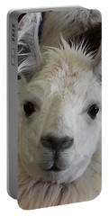 Portable Battery Charger featuring the photograph Who Me Llama by Caryl J Bohn