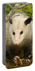 Who Says Possums Are Ugly Portable Battery Charger by Kathy Clark