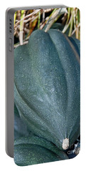 Whole Acorn Squash Art Prints Portable Battery Charger