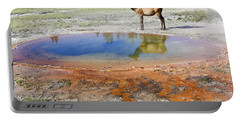 Portable Battery Charger featuring the photograph Wild And Free In Yellowstone by Teresa Zieba