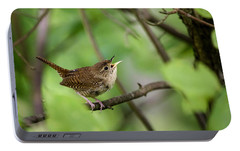 Wild Birds - House Wren Portable Battery Charger by Christina Rollo