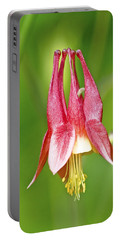 Wild Columbine Flower Portable Battery Charger