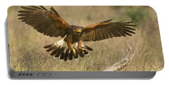 Wild Harris Hawk Landing Portable Battery Charger