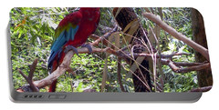 Portable Battery Charger featuring the photograph Wild Hawaiian Parrot  by Joseph Baril