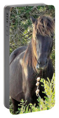 Wild Horse Close Up Portable Battery Charger