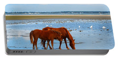 Wild Horses And Ibis Portable Battery Charger