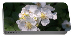 Wild Rose Portable Battery Charger by William Tanneberger