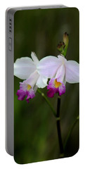 Wild Orchid Portable Battery Charger by Pamela Walton