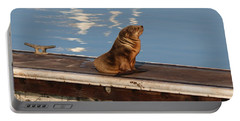 Wild Pup Sun Bathing Portable Battery Charger
