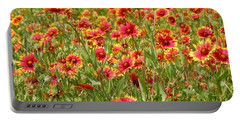 Portable Battery Charger featuring the photograph Wild Red Daisies #1 by Robert ONeil