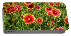Portable Battery Charger featuring the photograph Wild Red Daisies #4 by Robert ONeil