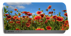Portable Battery Charger featuring the photograph Wild Red Daisies #7 by Robert ONeil