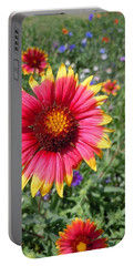 Portable Battery Charger featuring the photograph Wild Red Daisy #1 by Robert ONeil