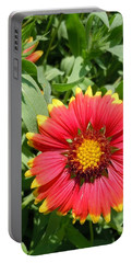 Portable Battery Charger featuring the photograph Wild Red Daisy #2 by Robert ONeil