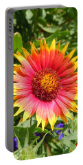 Portable Battery Charger featuring the photograph Wild Red Daisy #3 by Robert ONeil