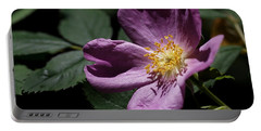 Portable Battery Charger featuring the photograph Wild Rose by Rona Black