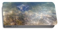 Portable Battery Charger featuring the photograph Wild Sting Ray by Eti Reid