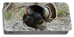 Wild Turkey Mnt Zion Ut Portable Battery Charger
