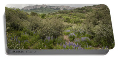 Wildflower Meadow In Uncompahgre Portable Battery Charger