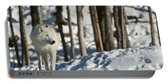 Portable Battery Charger featuring the photograph Winter Arctic Wolf by Wolves Only