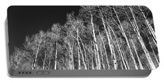 Portable Battery Charger featuring the photograph Winter Aspens by Roselynne Broussard