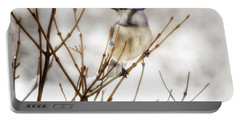 Winter Blue Jay Portable Battery Charger