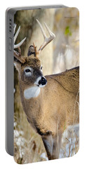 Portable Battery Charger featuring the photograph Winter Buck by Steven Santamour