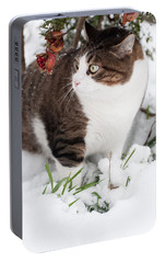 Portable Battery Charger featuring the photograph Winter Cat by Laura Melis
