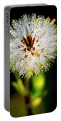 Portable Battery Charger featuring the photograph Winter Dandelion by Pedro Cardona