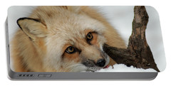 Winter Fox 2 Portable Battery Charger