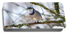 Winter Jay Portable Battery Charger