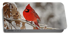 Portable Battery Charger featuring the photograph Winter Northern Cardinal by Lana Trussell