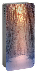 Winter Pathway Portable Battery Charger