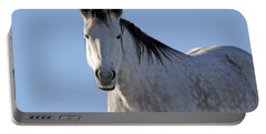 Winter Pony Portable Battery Charger