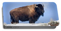 Portable Battery Charger featuring the photograph Winter Warrior by Jack Bell