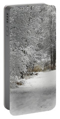 Portable Battery Charger featuring the photograph Winter's Kiss by Don Schwartz